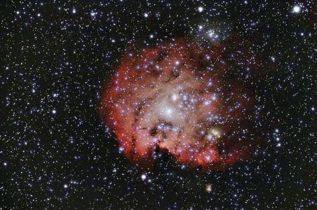 NGC 2175 und Sh 2-252